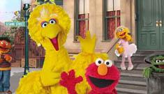 Celebrities and Musicians on Sesame Street