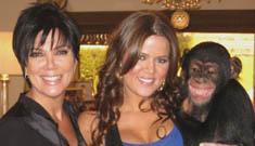 Kim Kardashian adopts chimpanzee after high profile mauling incident
