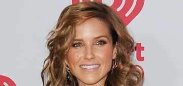 Sophia Bush calls out online stalker: 'I have been harassed to the point of sheer horror'