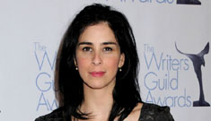 Sarah Silverman's Comedy Central show feels the economic pinch