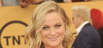 Amy Poehler in Jenny Packham at the SAGs: bad fit or 'glowing'?