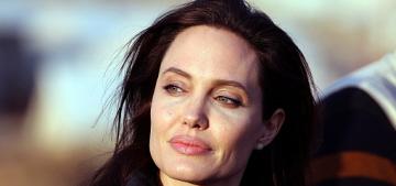Angelina Jolie made a UNHCR trip to the refugee camps of Iraqi Kurdistan