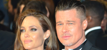 Brad Pitt 'in talks' to star as Richard Leakey in Angelina Jolie's 'Africa'
