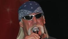 Hulk Hogan and divorce lawyer fight outside court
