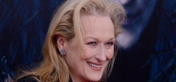 2015 Oscars Open Post: Hosted by Meryl Streep's 19th Oscar nomination