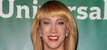 Kathy Griffin on Fashion Police: it felt disingenuous, like a dog pile