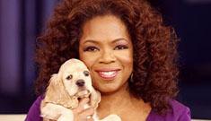 Oprah's puppy Sadie will recover from virus