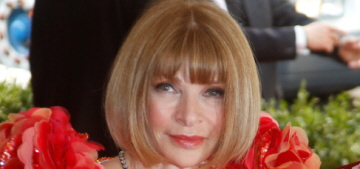 How will Anna Wintour punish the Met Gala guests who defied her selfie ban?