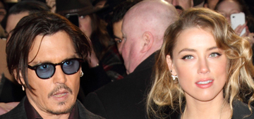 Why is Amber Heard being charged in Terriergate, but not Johnny Depp?