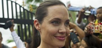 Angelina Jolie met Nobel laureate Aung San Suu Kyi in Myanmar: amazing?