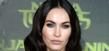 Did Megan Fox & Brian Austin Green split because he hated her career?