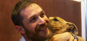 Tom Hardy cuddles some big dogs on an episode of 'For the Love of Dogs'