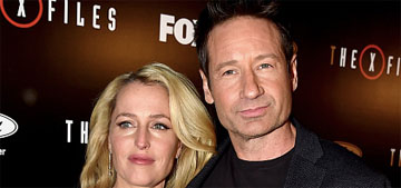 Gillian Anderson offered 1/2 of David Duchovny's pay for X-Files reboot: 'it's sad'