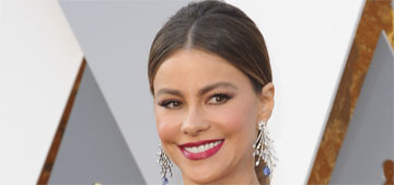 Sofia Vergara in Marchesa at the Oscars: elegant or fug?