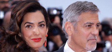 Julia Roberts laughed at 'image-obsessed' Amal Clooney: 'She's so absurd'