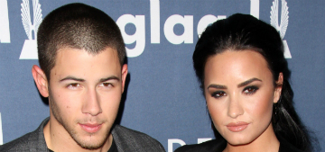 Demi Lovato and Nick Jonas gave Pulse employees a VIP concert suite