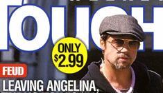 Brad Pitt wants the kids when he leaves Angelina