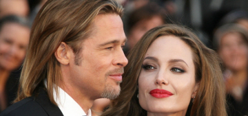 Us Weekly: Brad Pitt caused damage to a plane, but Angelina's still an icy bitch
