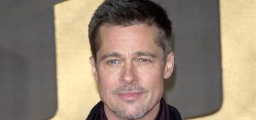TMZ: Brad Pitt got an emergency hearing to seal custodial documents