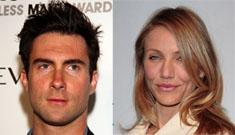 New couple alert: Cameron Diaz and Adam Levine?