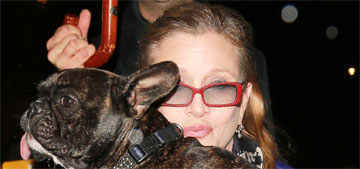 Carrie Fisher's daughter, Billie Lourde, will care for her French bulldog, Gary