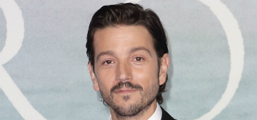 Diego Luna reposted a fan's emotional comment: 'Representation matters'
