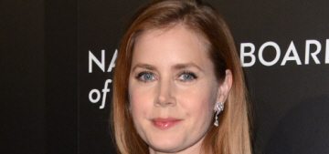 Amy Adams in Marchesa at the NBR Awards in NYC: lovely or meh?