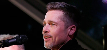 Brad Pitt stepped out for a charity event in Malibu with Sting & Chris Cornell