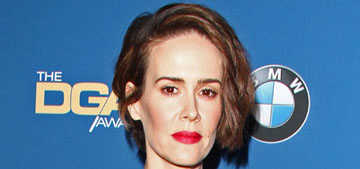 Sarah Paulson in Andrew Gn at the DGA Awards: amazing or frumpy?