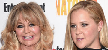 Amy Schumer's dad cries at meeting 'love of his life' Goldie Hawn