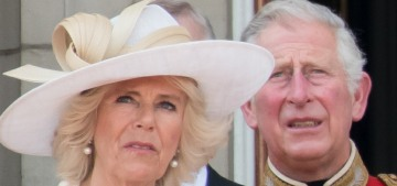 New biography of Duchess Camilla makes strange claims about Diana & Charles