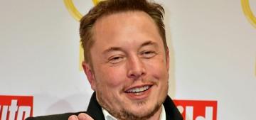 Page Six: Elon Musk is allegedly pursuing Dakota Johnson, Jessica Hart