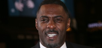 Idris Elba proposed to Sabrina Dhowre at a screening for his latest film