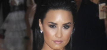 Blind item: who was a 'complete bitch' to Demi Lovato at the 2016 Met Gala?