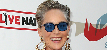 Sharon Stone isn't engaged again, she's just wearing a gorgeous ring