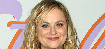 Amy Poehler is making a wine comedy for Netflix which will include SNL alums