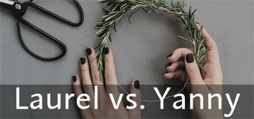 Laurel vs. Yanny: the viral audio clip which is tearing the world apart