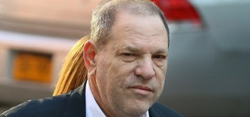 """The grand jury indicted Harvey Weinstein on multiple charges"" links"