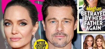 Us Weekly: Brad Pitt 'was done being Mr. Nice Guy' with Angelina Jolie