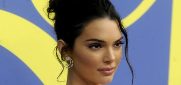 Kendall Jenner's Doberman apparently nipped a little girl at lunch in LA