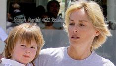 Sharon Stone throws huge, insane temper tantrum on a plane