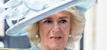 Did Duchess Camilla try to get William to break up with 'pretty but dim' Kate?