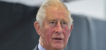 Prince Charles is still 'frosty' about Harry & William's Diana documentary
