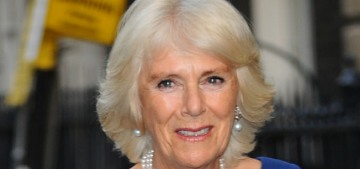 Duchess Camilla makes her own limited edition honey from her personal beehives