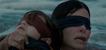 Netflix: 'Please do not hurt yourselves with this Bird Box challenge'
