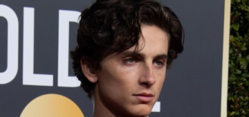 Timothee Chalamet wore a sparkly Louis Vuitton harness to the Golden Globes