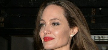 Angelina Jolie is spending three days in Bangladesh on UNHCR business