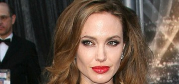 2019 Oscars Open Post: Hosted by the seven-year anniversary of Angelina's leg