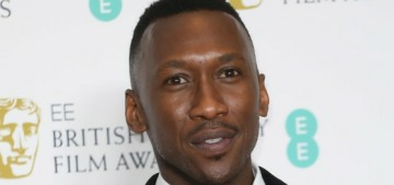 Mahershala Ali won the Best Supporting Actor Oscar for 'Green Book'
