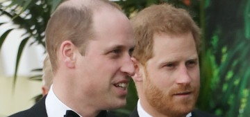 Prince Harry & William join their dad at the premiere of 'Our Planet'